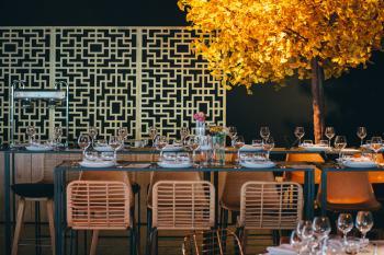 Zoute grand Prix Knokke Bonhamms tent autorally verhuur van feestmateriaa sfeervolle inrichting herfstthema rotan gouden stoelen floating garden - FÆK | Tree Ginkgo yellow two stems 400 - geel - tweestammig - boom - faek - verhuur - evenementen - feest -