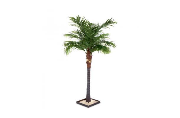 FÆK | Tree Palmtree - palmboom - groen - boom - tree - faek - verhuur - evenementen - feest - rental - events - artificieel - artificial