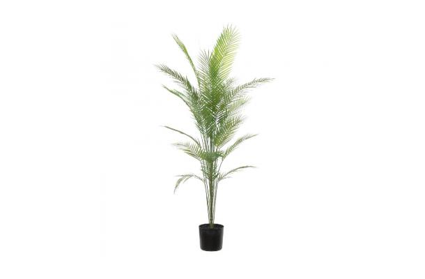 FÆK | Plant Palmier 180 - faek - verhuur - evenementen - feest - rental - events - artificieel - artificial