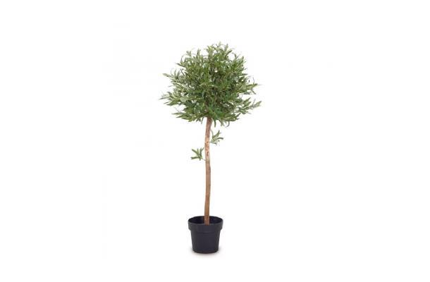 FÆK | Plant Olive tree 140 - olijfboom - groen - boom - faek - verhuur - evenementen - feest - rental - events - artificieel - artificial