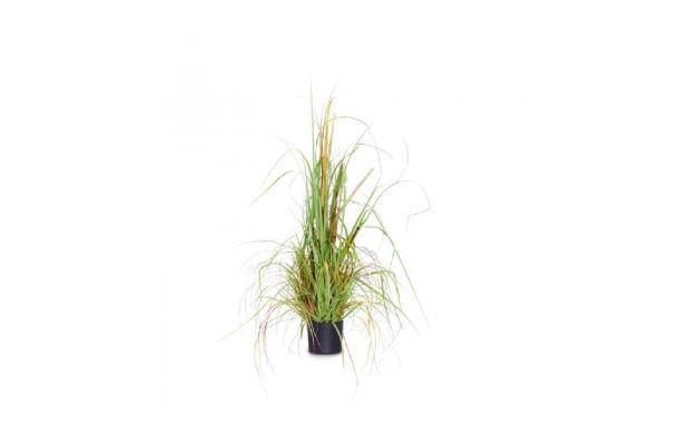 FÆK   Plant Dune Grass - duingras - faek - verhuur - evenementen - feest - rental - events - artificieel - artificial