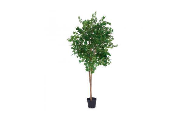 FÆK | Plant Maple green 230 - groene esdoorn - faek - verhuur - evenementen - feest - rental - events - artificieel - artificial