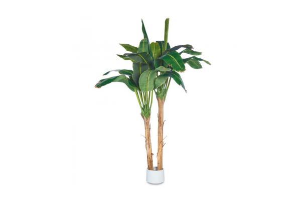 FÆK | Banana plant 350 - bananenboom - boom - tree - faek - verhuur - evenementen - feest - rental - events - artificieel - artificial