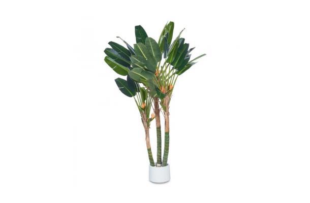 FÆK | Plant Strelizia 315 - tropisch - strelitzia - boom - tree - faek - verhuur - evenementen - feest - rental - events - artificieel - artificial