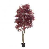 FÆK | Plant Maple red 230 - esdoorn rood - boom - tree - faek - verhuur - evenementen - feest - rental - events - artificieel - artificial