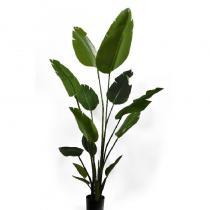 FÆK | Plant Strelizia 120 - strelitzia - groen - faek - verhuur - evenementen - feest - rental - events - artificieel - artificial