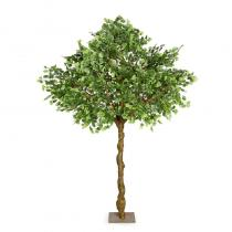FÆK | Tree Ginkgo green one stem 300 - groen -éénstammig - boom - tree - faek - verhuur - evenementen - feest - rental - events - artificieel - artificial