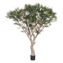 FÆK | Tree Olive tree 250 - olijfboom - groen -boom - tree - faek - verhuur - evenementen - feest - rental - events - artificieel - artificial