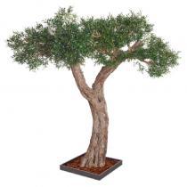 FÆK | Tree Olive tree 320 - olijfboom - groen - boom - tree - faek - verhuur - evenementen - feest - rental - events - artificieel - artificial