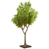 FÆK | Tree Green Ficus 615 - Artificial tree - Artificiële boom - groen - rental - huren verhuur - events - evenementen - party - feest - decoratie