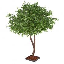 FÆK | Tree Ginkgo green two stems 400 - groen - tweestammig - faek - verhuur - evenementen - feest - rental - events - artificieel - artificial